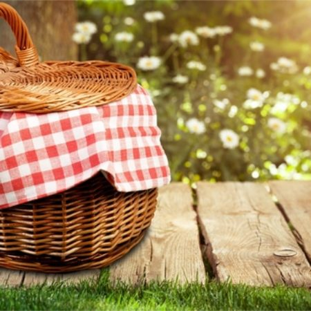 Welcome Back to Church Picnic | Sharonville United Methodist